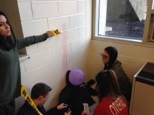 Students in Ms. L'Ecuyer's Forensics class investigate a mock crime scene prepared by classmates. (Courtesy Photo)